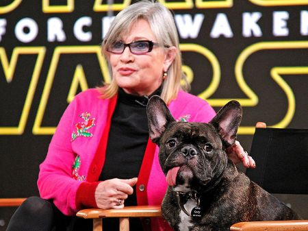 A picture of Carrie Fisher and her therapy dog, Gary